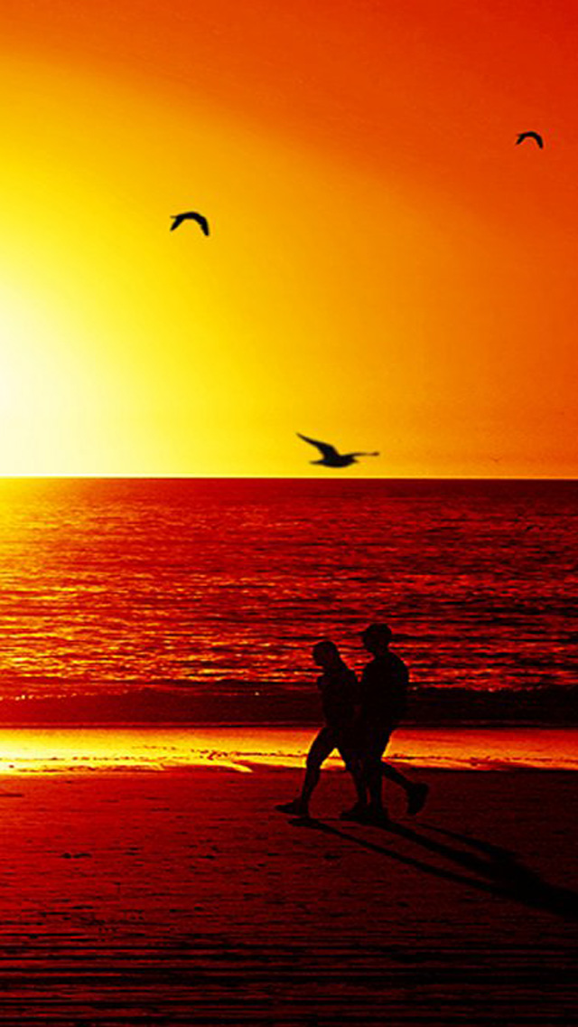 Free Download Spring Sunset IPhone 5 HD Wallpapers