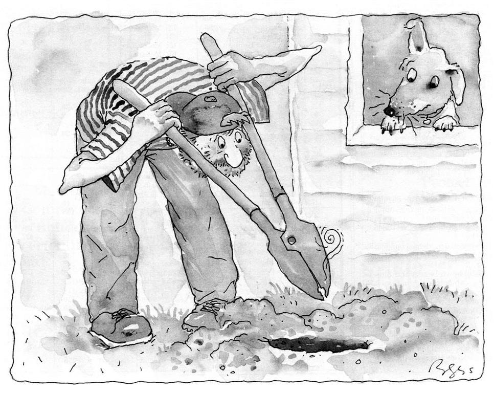 temposenzatempo june 2015 Vaudeville Signs this story was featured in the february 1993 edition of fine homebuilding by coincidence the ac panying cartoon was a remarkably accurate caricature