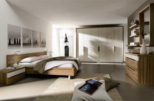 Future house design dream bedroom design for Future bedroom designs