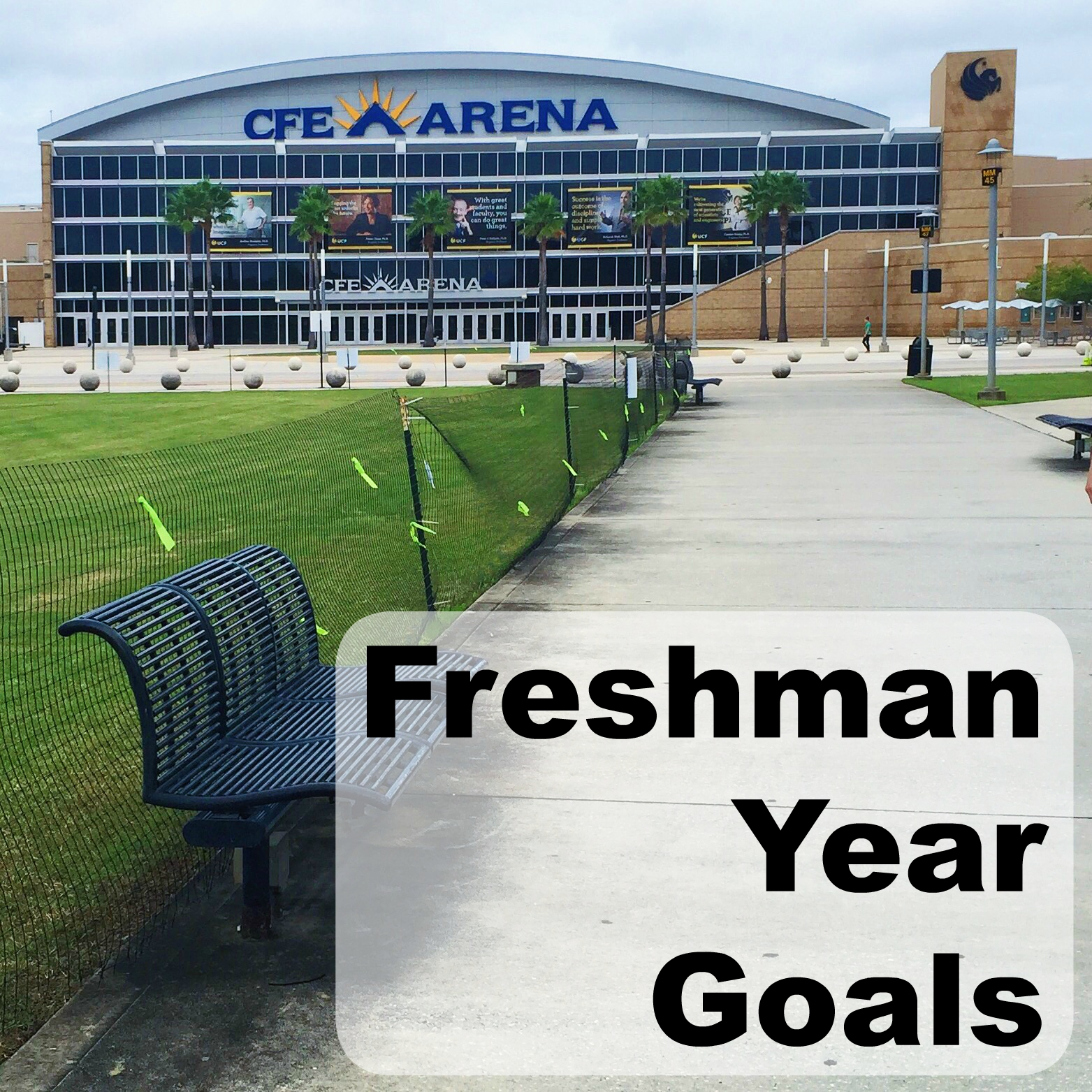 freshman year goals a southern sunshine here are the ten goals that i hope will achieve by the end of this first year in college