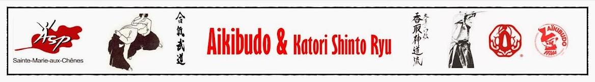 AIKIBUDO & KATORI SHINTO RYU