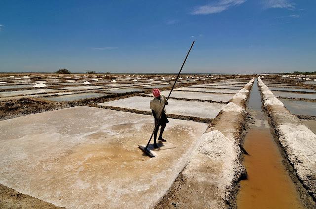 Estanques de sal en Marakkanam (India).