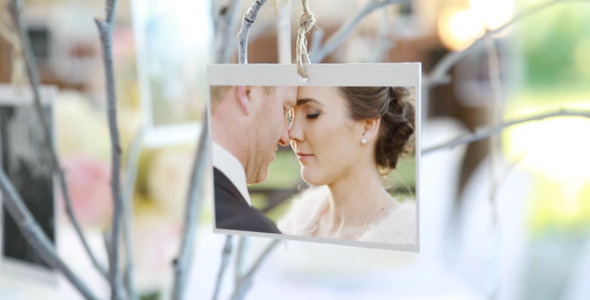 VideoHive Photo Gallery at a Country Wedding