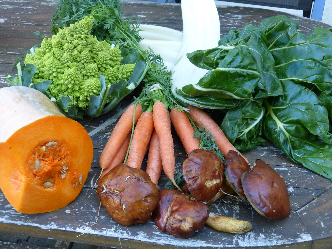 potiron, cèpes, carottes, chou Romanesco