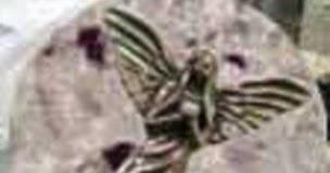 Resultado de imagen de Estatua de un angel encontrada en la Luna con 200.000 años de antiguedad