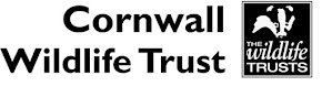 Shoresearch is a Project of Cornwall Wildlife Trust
