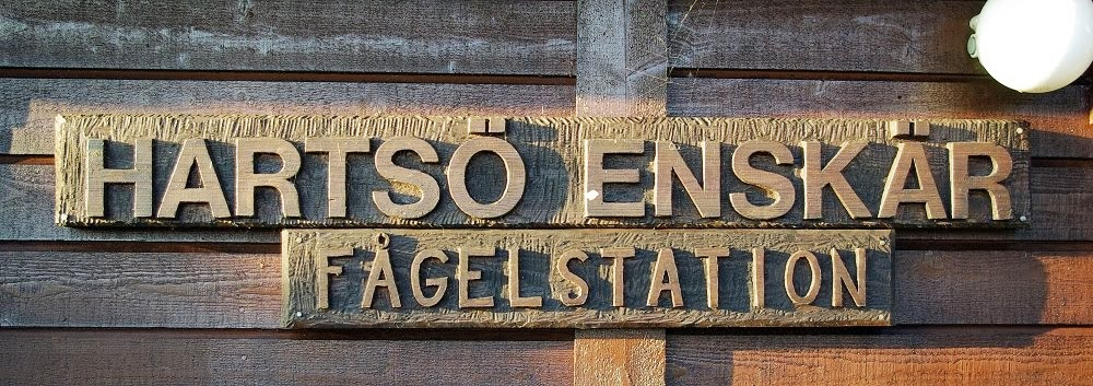 Hartsö-Enskärs Fågelstation