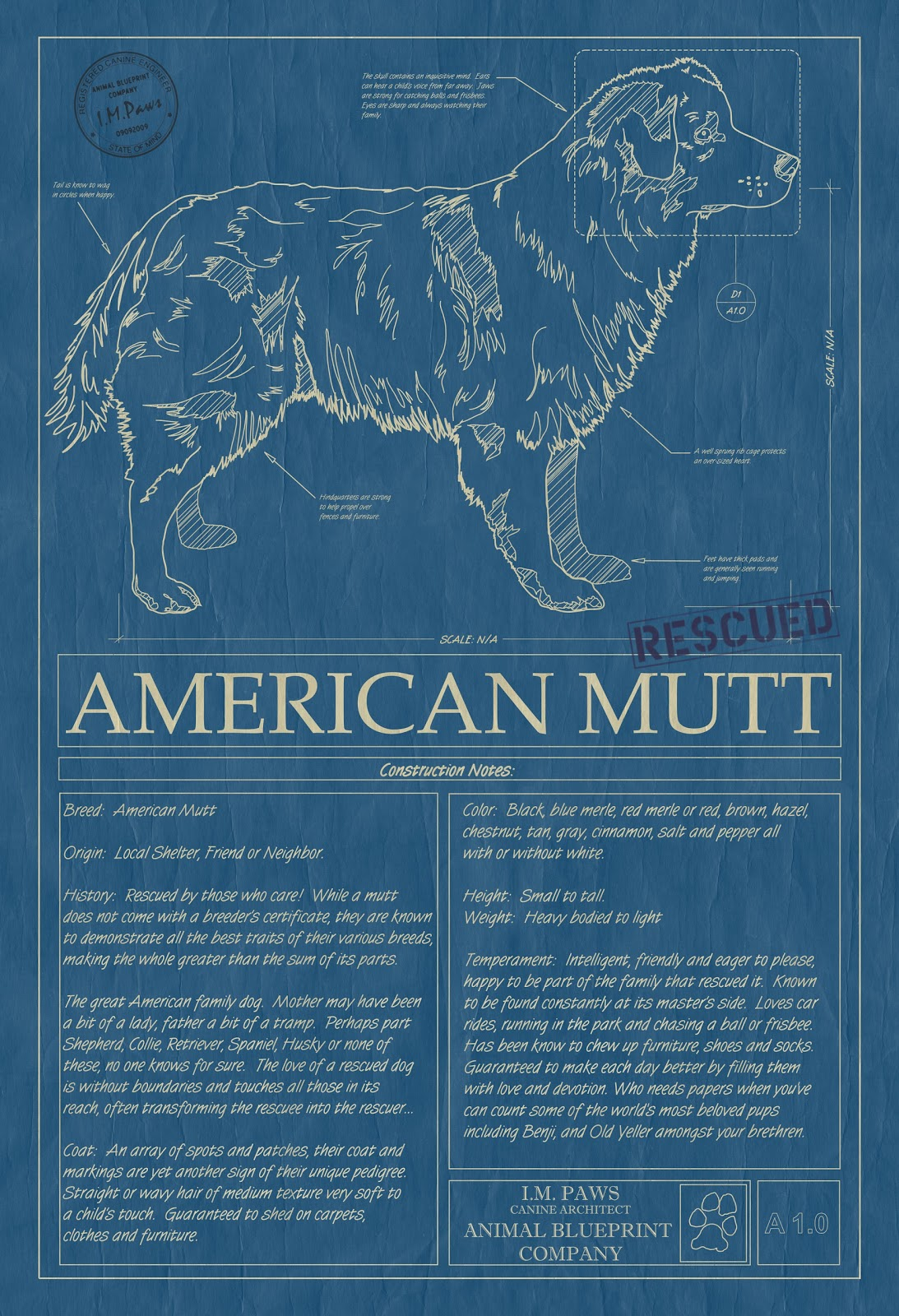 To you animal blueprint company adds rescued mutts cats art animal blueprint company adds rescued mutts cats art malvernweather Choice Image