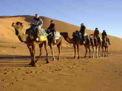 Camel ride 1 night in the desert moroco dreams adventure EXCURTIONS MARRAKECH ESSOUIRA morocco dreams adventure tours morocco