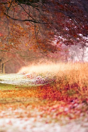 Autumn Mobile