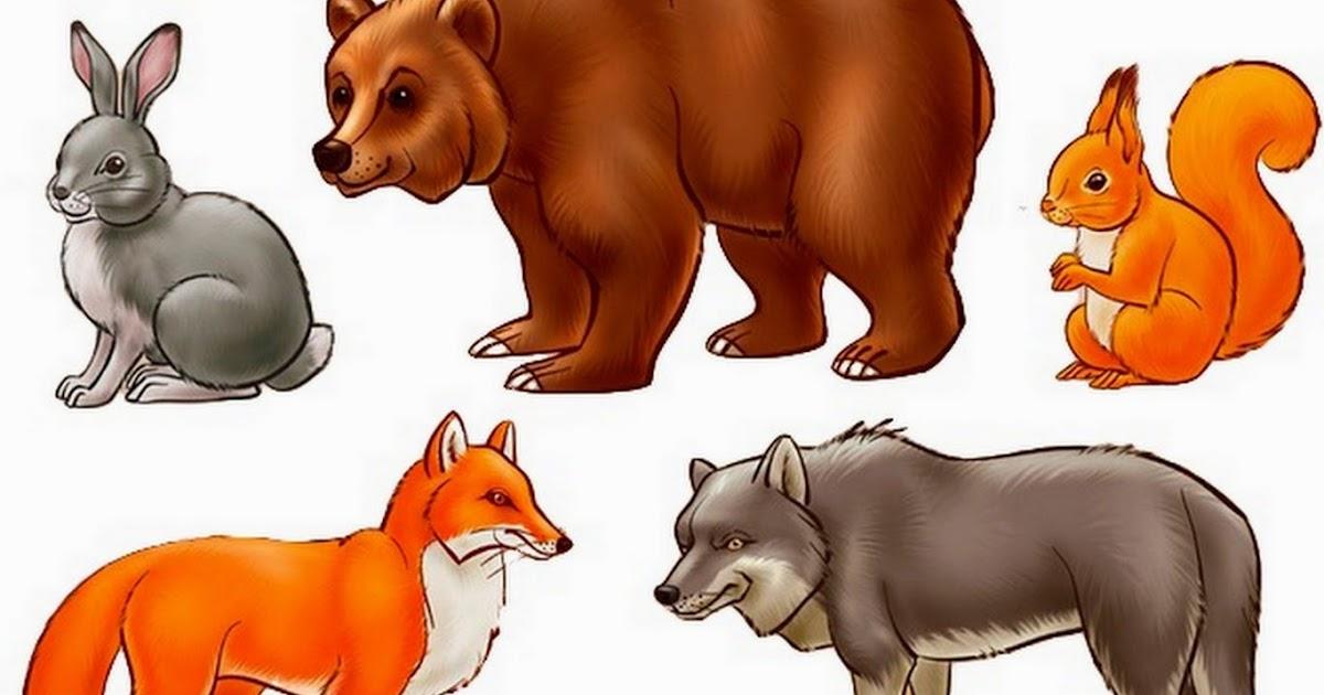 скачать животные леса картинки