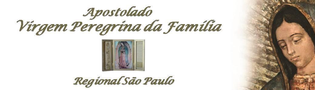 Virgem Peregrina da Família - SP