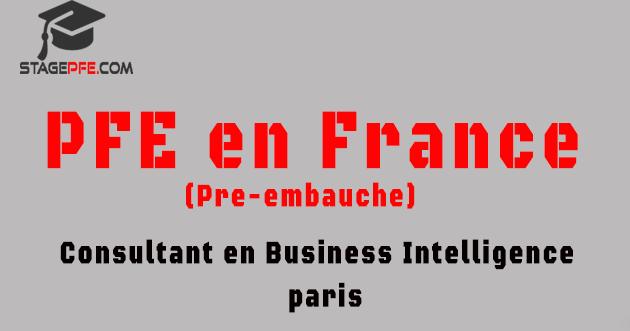 pfe en france 2015  consultant en business intelligence