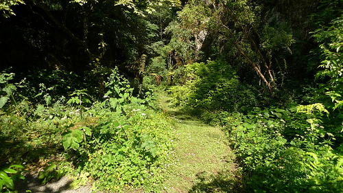 Chudleigh Rocks Garden