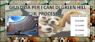 GIUSTIZIA PER I CANI DI GREEN HILL - IL PROCESSO