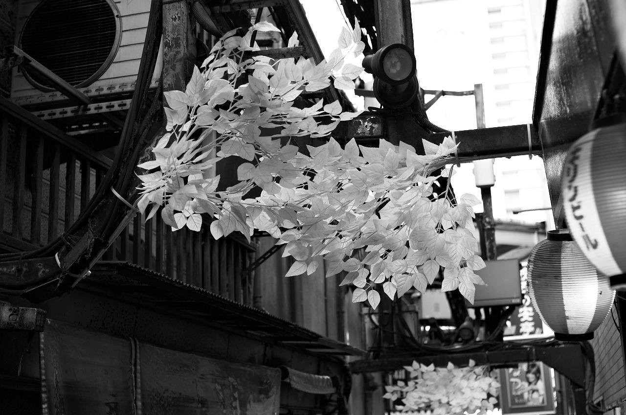 Shinjuku Mad - Evolve into nothing 05