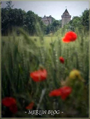 Blandy-les-Tours : le château le plus hanté de France Blandylestours2
