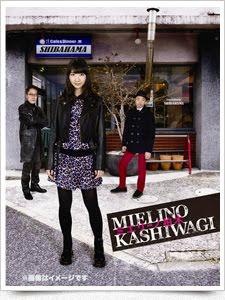 ミエリーノ柏木DVD-BOX & Blu-ray-BOX