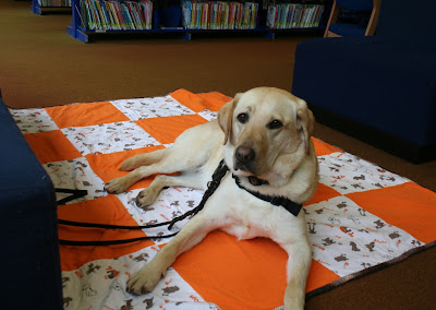 cabana laying on an orange and dog print quilt on the floor of the library