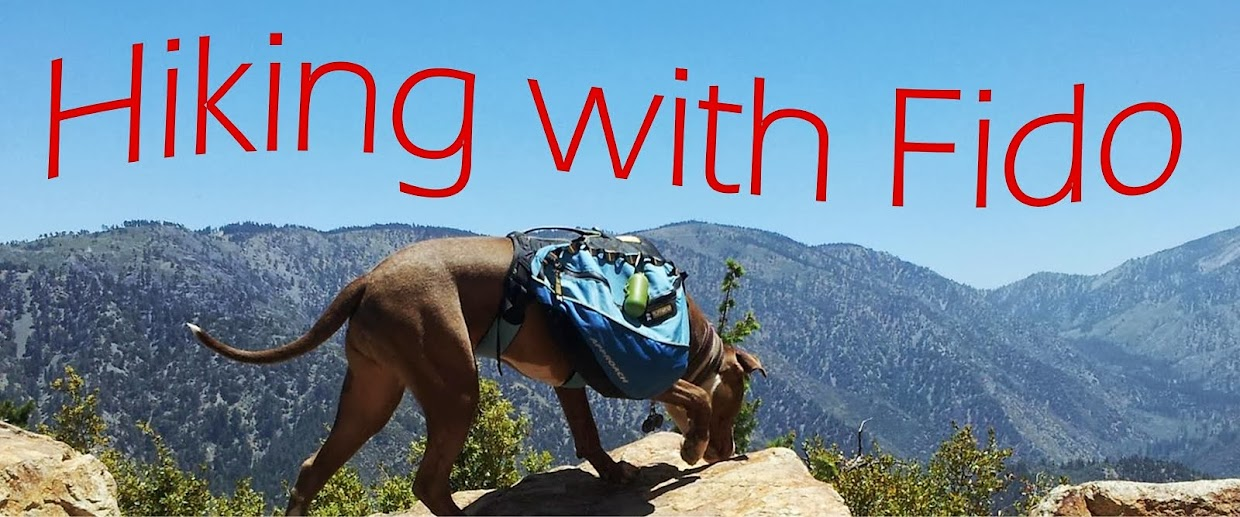 Hiking with Fido - Hikes with Dogs on Southern California Hiking Trails