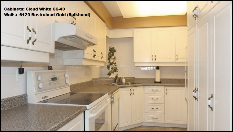 ColorScapes Professional Painting