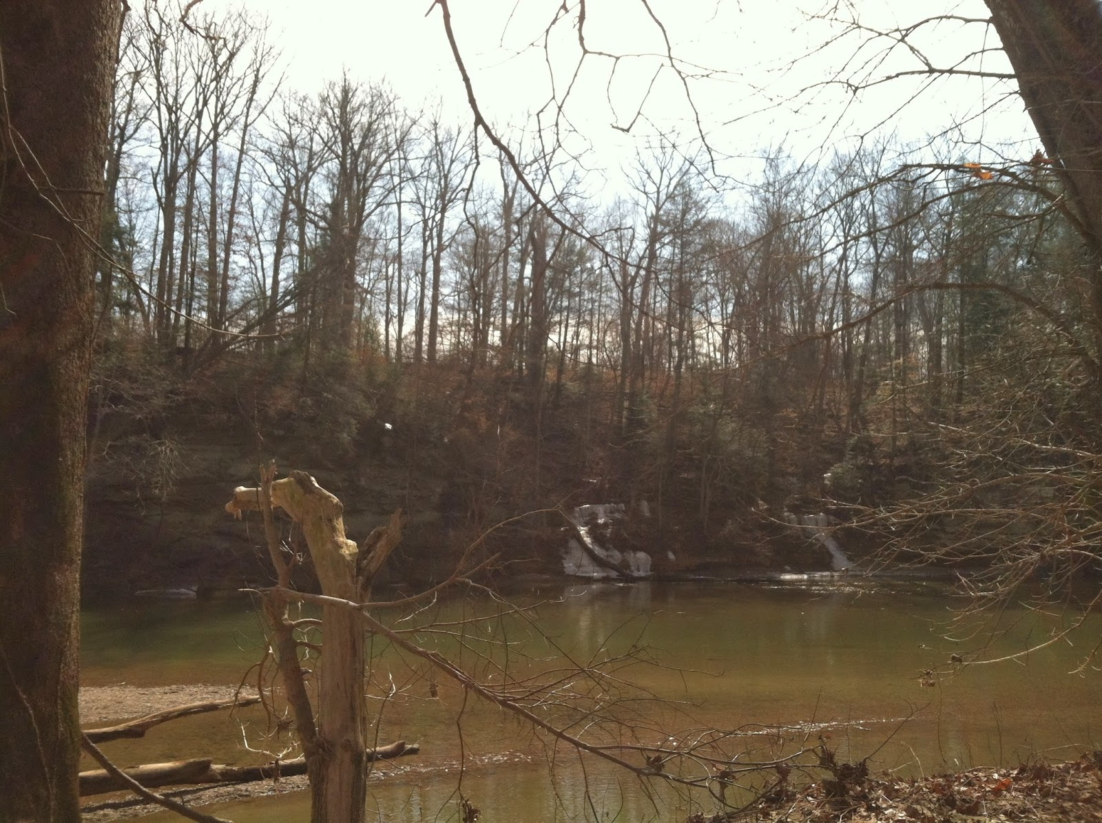 nature, lake, turkey run