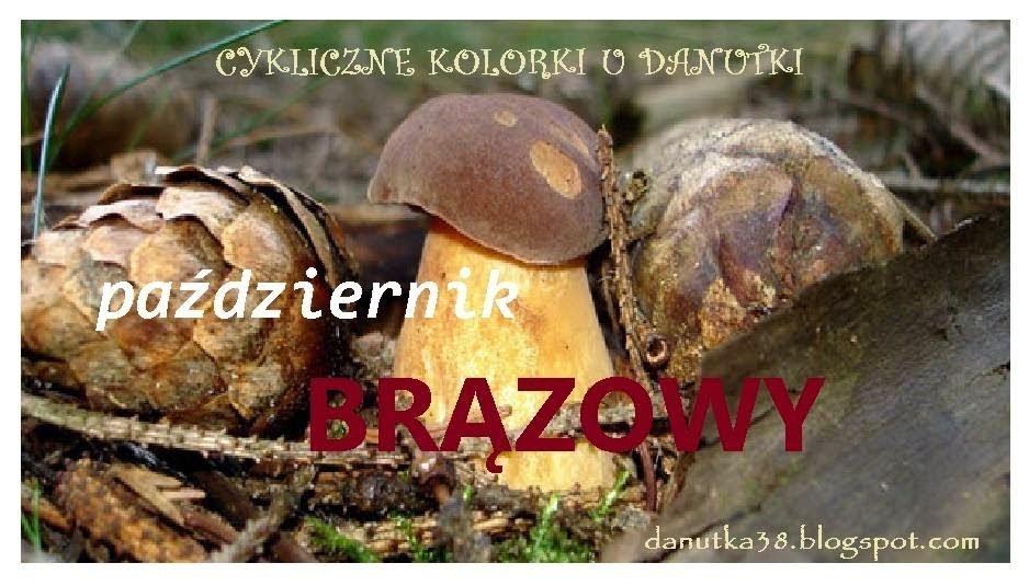 """"""" Cykliczne kolorki u Danutki - Pażdziernik """""""