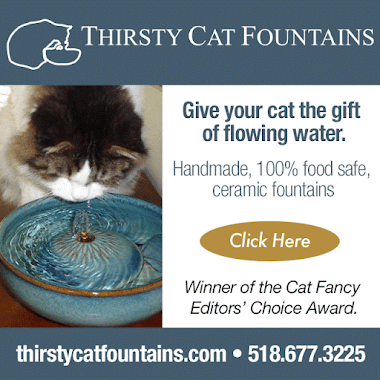 Thirsty Cat Fountains-Sponsored