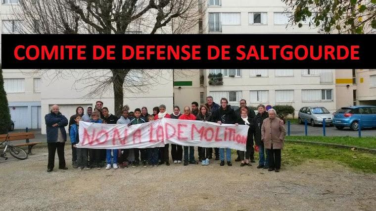 Comité de Défense de Saltgourde