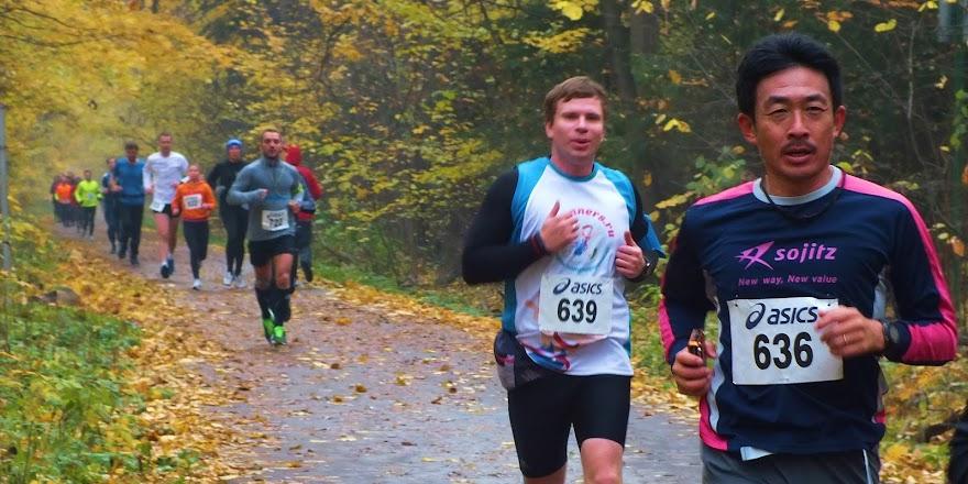 VI марафон «Лосиный Остров» - 10 октября 2015 - регистрация открыта