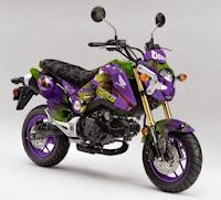 Honda Grom Teenage Mutant Ninja Turtles Donatello Concept (2014) Front Side