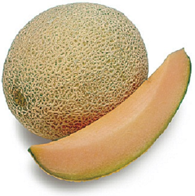 Wallpaper gambar buah melon yang segar biasanya banyak juga dengan ...