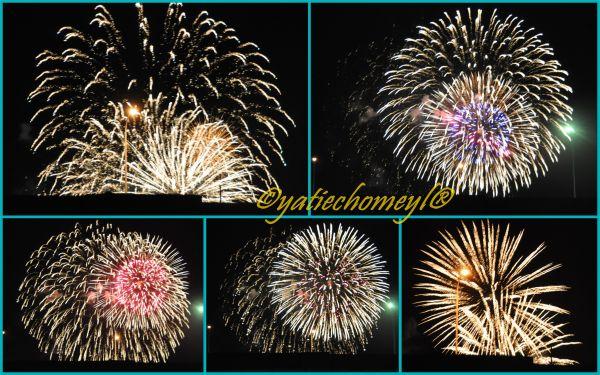 http://2.bp.blogspot.com/-ALVzn4IGnHY/TkkDP0LTNTI/AAAAAAAALn8/A2uvvkov2Bg/s1600/hanabi%2B2011.jpg