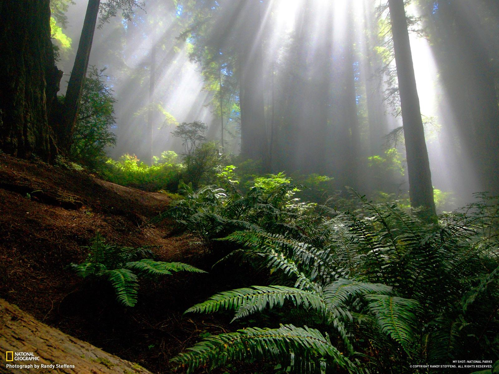 http://2.bp.blogspot.com/-ALmgidWXApc/TtpaFbq5FiI/AAAAAAAAAfs/szm88xOEXzc/s1600/41-national-parks-1600.jpg