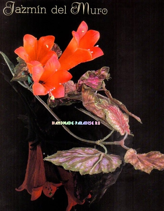 Смитианта из фоамирана. Шаблоны цветов