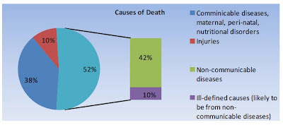 Causes of Deaths