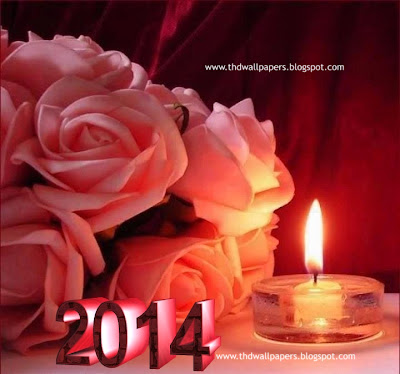 Beautiful Latest Happy New Year 2014 Pictures
