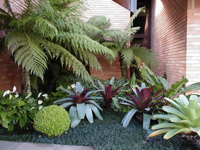 Jardins externos ap em decora o for Plantas para estanques pequenos