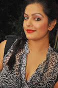 Item Song Actress Reva Photos Gallery-thumbnail-16