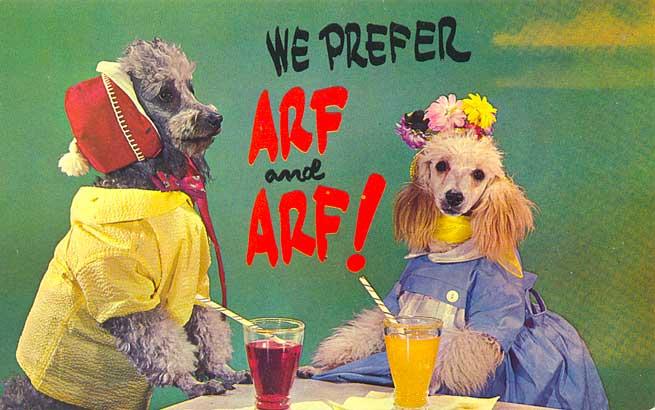 dogArfArf0812.jpg