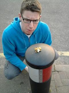 Fake wasp on a bollard in Luton