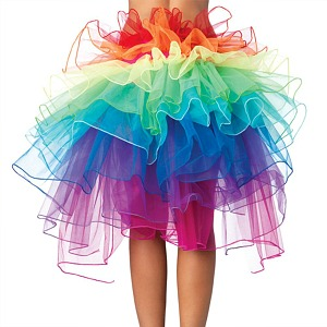 Rainbow Coloured Tutu Skirt