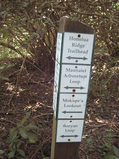 Well sign posted trail