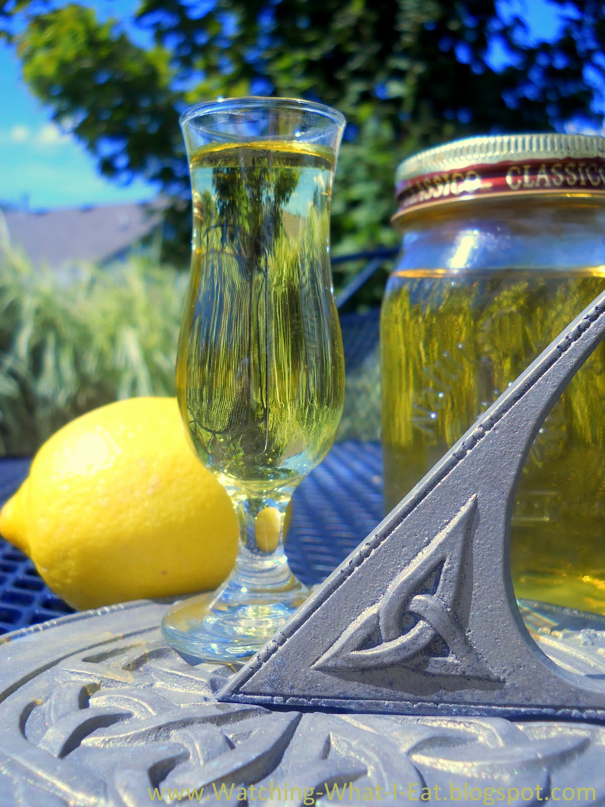 Watching What I Eat: Homemade Limoncello & Old-Fashioned ...