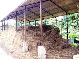 Pengertian Limbah Pertanian