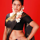 BGrade Actress Naisa in Saree Spicy Pics