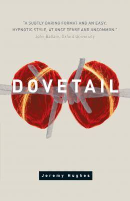 dovetail by jeremy hughes, published by alcemi wales, front cover detail