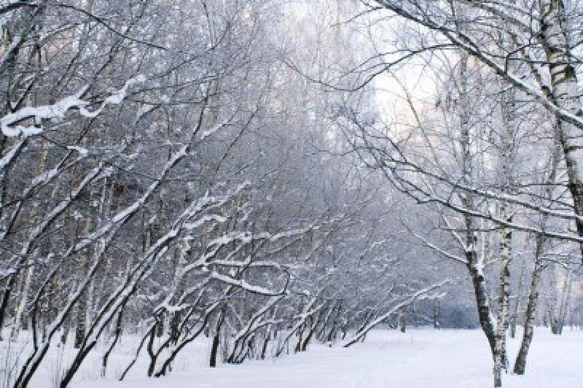 Descriptive essay of a winter morning? HELP!?