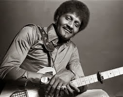 Albert Collins  Maestros del Blues