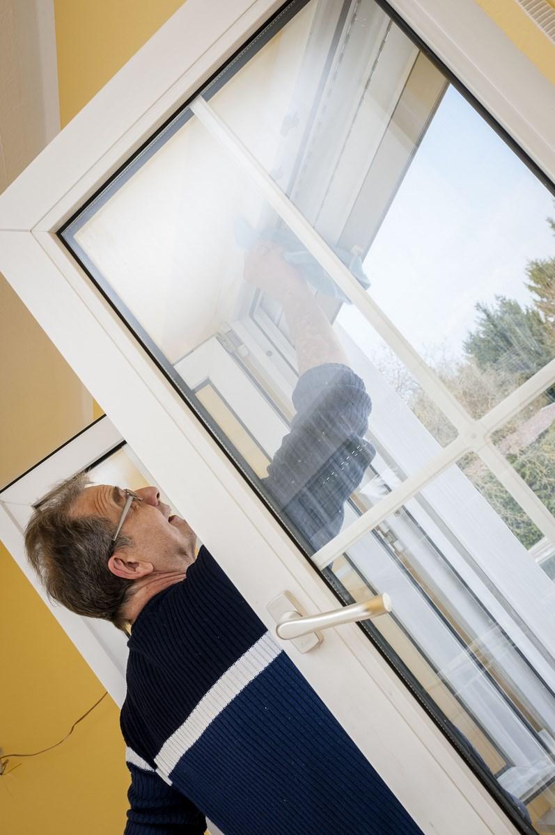 Der Putztiger am Fenster